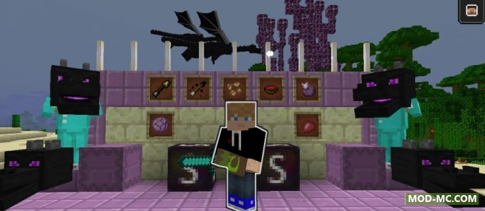 Minecraft 1.1.3